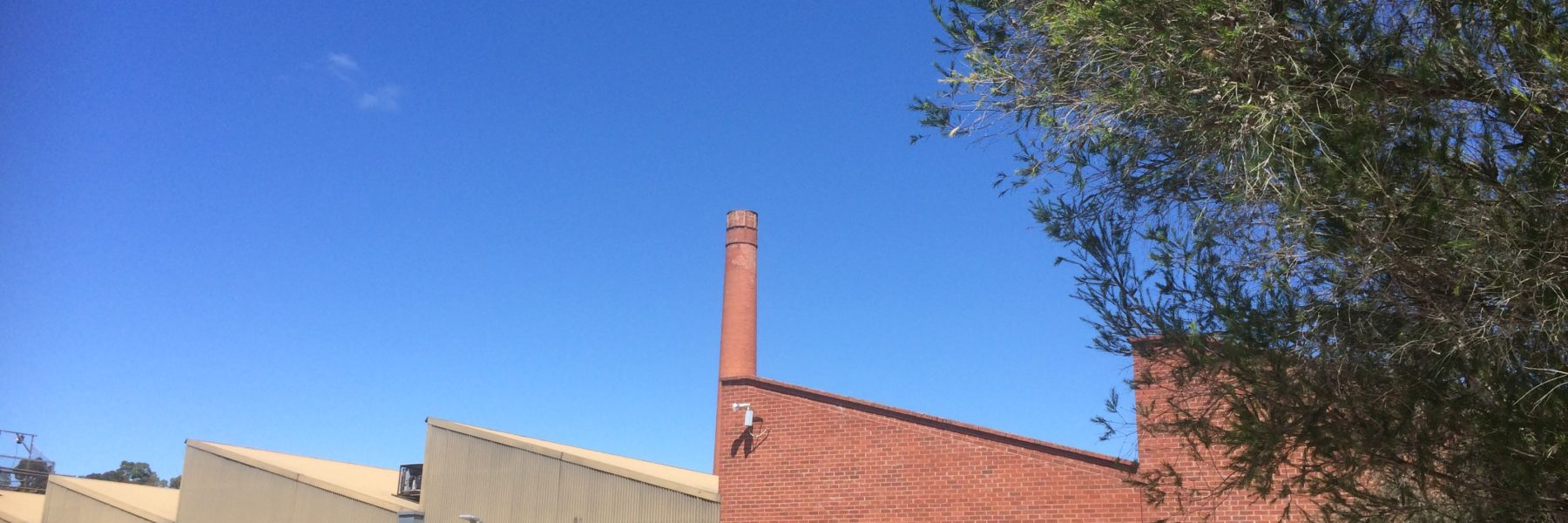 Sawtooth at The Mill Castlemaine